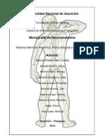 Sistema Nervioso Periférico. Plexo Braquial y Lumbosacro