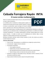 Cebada Forrajera Rayén INTA