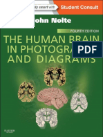 THE HUMAN BRAIN IN PHOTOGRAPS AN DIAGRAMS (Notte)