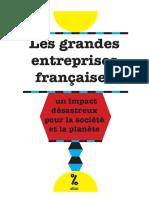 Les grandes entreprises françaises
