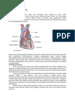 Materi Penyakit Jantung Dan Pembuluh Darah