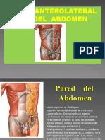 Pared Anterolateral Del Abdomen