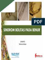 SINDROM BOLITAS