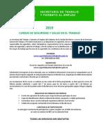 STyFE CURSOS.pdf