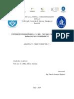 Rezumat_Amaritei_Daniela.pdf