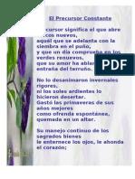 03 - Reflexiones de Un Guijarro - El Precursor Constante [Alef Guimel]