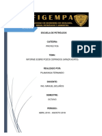 Informe Pozo Araza Norte Fernando Pilamunga