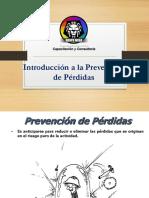 Introducción-a-la-Prevencion-de-Perdidas.pdf