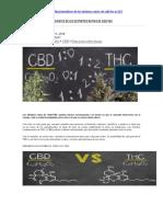 Beneficios de Los Distintos Ratios de Cbd
