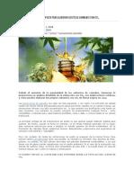 Guía Completa Para Elaborar Aceite de Cannabis Con Co