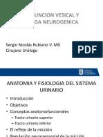 Disfuncion Vesical.vejiga Neurogenica 2017