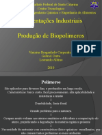 seminario biopolimeross