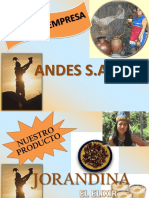 35004164-Marketing-Proyecto-Final-Jorandina.pptx
