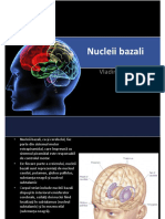 13. Nucleii bazali - Dr Makkai Vladimir.pdf