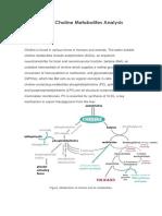 Choline and Choline Metabolites