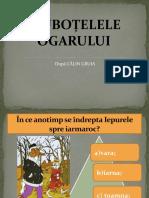 Joc Ciubotele (1)