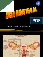 Ciclo+Menstrual[1]