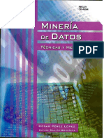 251302181-Mineria-de-datos.pdf