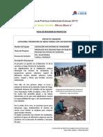 Ficha_resumen_proyectos_7_concurso_practicas-ambientales_2010.pdf