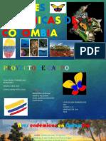 Especies Endemicas de Colombia