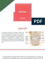 Artrosis, Histología