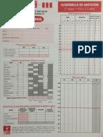 246765133-Protocolo-WPPSI-4-7-3.pdf