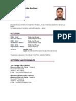 CV MIO.docx
