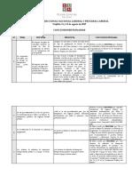 Conclusiones pleno jurisdiccional laboral y procesal laboral