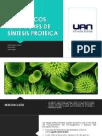 Antibióticos Inhibidores de Síntesis Proteica