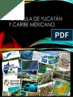 Península de Yucatán y caribe mexicano.pptx