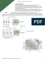 Motor Trifásico a Monofásico - Calculo de Condensador