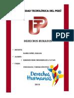 330663668-Derechos-Humanos-Monografia.pdf