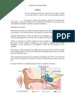 Audicin Sistema Somatico Dolor 1213157391602737 8