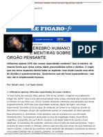 Cérebro Humano. Verdades e Mentiras Sobre Nosso Órgão Pensante _ Saúde 247
