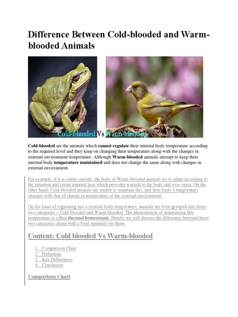 Difference Between Cold-blooded and Warm-blooded Animals | Thermoregulation  | Temperature