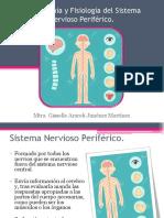3. Sistema Nervioso Periférico