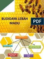 Budidaya Lebah Madu Fix 1