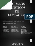Cinética Del Proceso de Flotacion 3