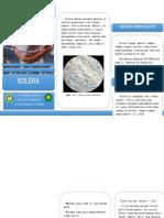 Tugas Promkes - Winarti Junita (Brosur Kolera)