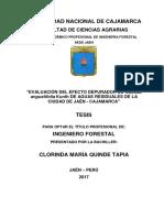 Evaluación Del Efecto Depurador de Guadua Angustifolia Kunth de Aguas Residuales de La Ciudad de Jaén - Cajamarca