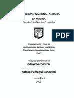 Caracterización y clave de identificación de Bambúes en el ámbito Chanchamayo, departamento de Junín, Perú.pdf