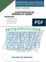Trabajo de Exposicion Comercio Exterior- Esparragos!