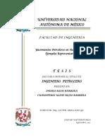 Yacimientos_Petro_Turbi.pdf