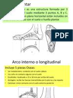 Rehabilitación y Fisioterapia en Atención Primaria
