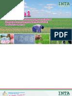 Manual sintomas de enfermedades CAHB 2012.pdf