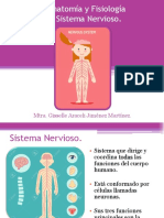 2. Anatomía y Fisiología Del Sistema Nervioso