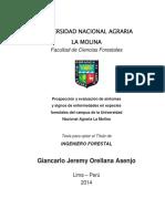 H10-O74-T.pdf