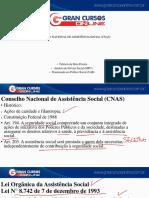 Aula 1 - Conselho Nacional de Assistência Social