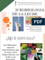 10. Microbiologia de La Leche