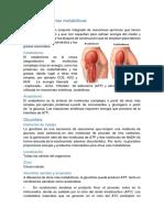 Diabetes y Complicaciones Metabolicas